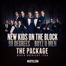 New Kids on the Block Tour 2013